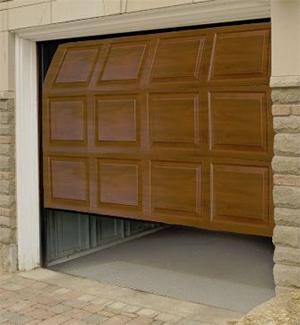 Garage Door Sugar Land